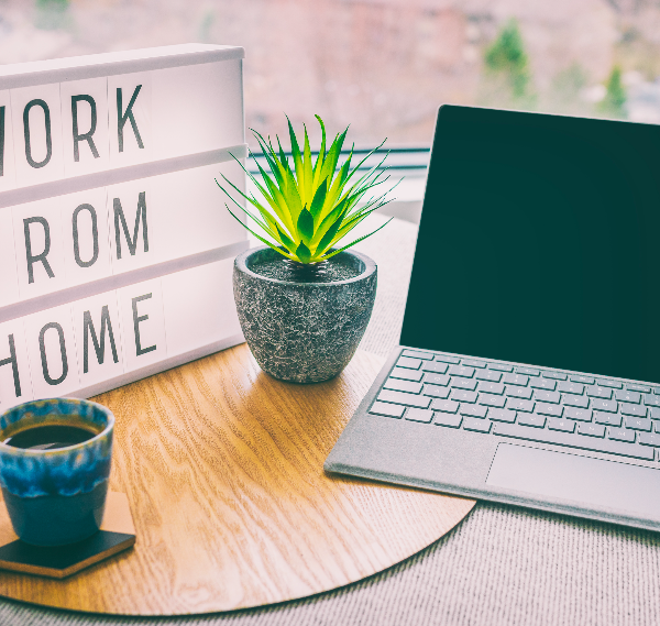 Skills and Systems for Remote Working
